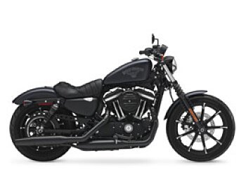 2017 Harley-Davidson Sportster Iron 883 for sale 200576134