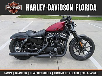 2017 Harley-Davidson Sportster Iron 883 for sale 200577276