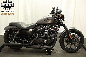 2017 Harley-Davidson Sportster Iron 883 for sale 200592546