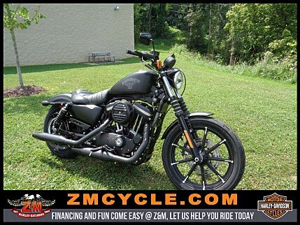2017 Harley-Davidson Sportster for sale 200489529