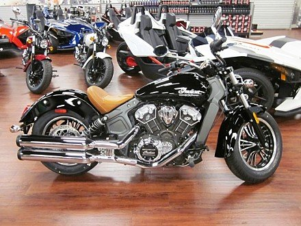 2017 Indian Scout for sale 200566528
