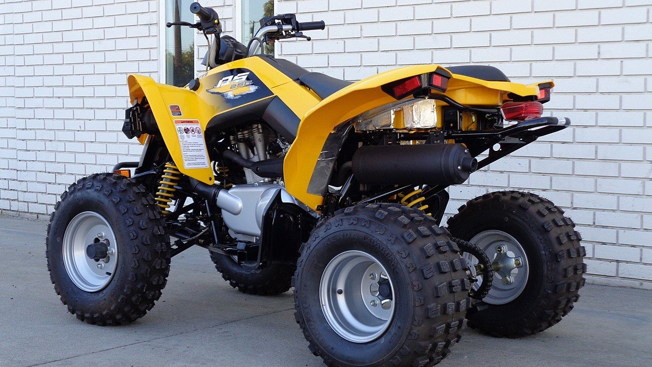 2018 Can-Am DS 250 for sale near La Habra, California ...
