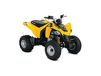 2018 Can-Am DS 250 for sale 200534324