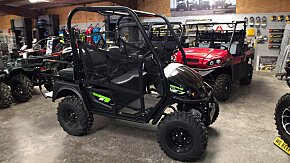 2018 Textron Off Road Prowler EV for sale 200564037
