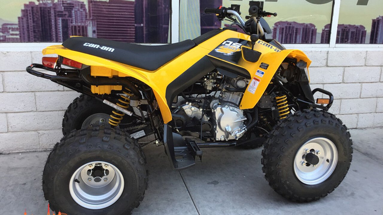 2019 Can-Am DS 250 for sale 200609941