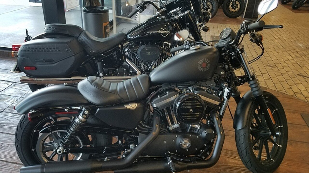 2019 Harley-Davidson Sportster for sale 200621809