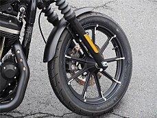 2019 Harley-Davidson Sportster Iron 883 for sale 200628253