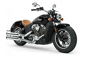 2019 Indian Scout for sale 200652858