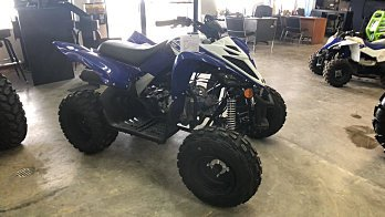 2019 Yamaha Raptor 90 for sale 200611515