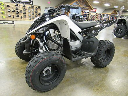 2019 Yamaha Raptor 90 for sale 200627954