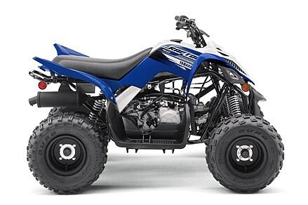 2019 Yamaha Raptor 90 for sale 200628068