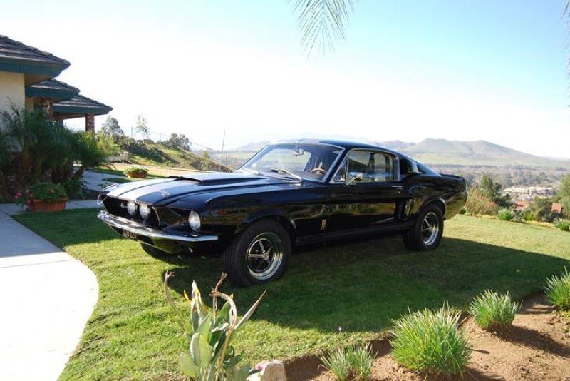 1967 Shelby GT500 Classics For Sale